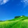 Jahreszeiten: Sommer